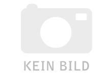 RaymonCrossRay E 4.0 - 2021