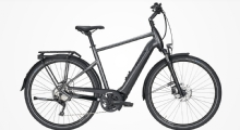 """PegasusPremio Evo 10 Lite E-Bike 28"""" Chrome-Matt 10-Gang Modell 2020"""