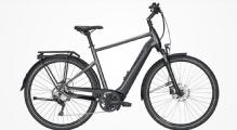 """Pegasus Premio Evo 10 Lite E-Bike 28"""" Chrome-Matt 10-Gang Modell 2020"""