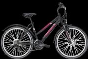 Pegasus Avanti Sport 18 26 Zoll 2020