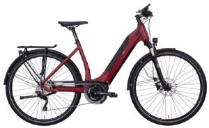 e-bike manufaktur13ZEHN