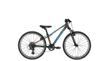 Conway MTB MS 200