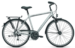 Raleigh Executive 24 Herrenrad