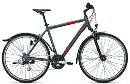 Rixe Cross XC 5.0 Street Bike