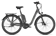 Raleigh Kingston 8 XXL, Granitegrey matt