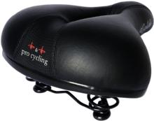 P&P pro cyclingGoldi
